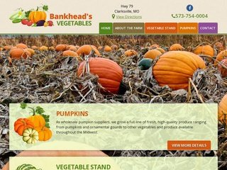 Agriculture Website Design